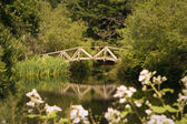 Garden Bridge Over Pond — Stock Photo