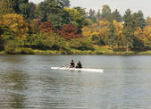 Pair Rowing In Autumn — Stock Photo
