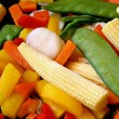Frozen Assorted Vegetables — Stock Photo