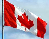 Orgulhosamente canadense — Foto Stock