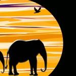 Elephants At Sunset — Stock Photo #36713407
