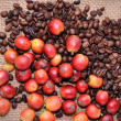 Coffee beans — Stock Photo #12891742