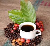 Fresh raw coffee beans, coffee cup with leaf — Stock Photo