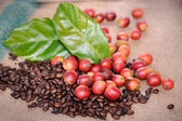 Fresh raw coffee beans with leaf — Stock Photo