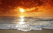 Magical marine sunset — Stock Photo