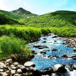 mountain river — Stock Photo