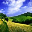 Path on a mountain meadow — Stock Photo