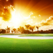 Sunny meadow golf course — Stock Photo