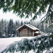 Hut on a winter meadow — Stock Photo #32092561