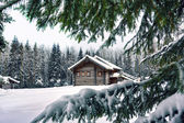 Hut on a winter meadow — Stock Photo