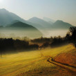 Fog in the valley — Stock Photo