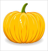 Pumpkin — Stock Vector