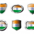 India set shiny buttons and shields of flag with metal frame - v — Stock Vector #7366448