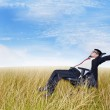 Businessman in the meadow — Stock Photo #12890885
