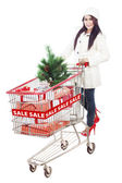 Beautiful woman push trolley for Christmas shopping sale isolated — Stock Photo