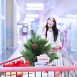 Stock Photo: Christmas shopping trolley in malld