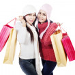 Two friends bring shopping bags, isolated in white — Stock Photo