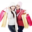 Stock Photo: Two friends bring shopping bags, isolated in white