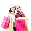 Friends shop together holding bags isolated in white — Stock Photo #16278089