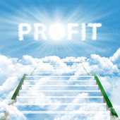 High profit — Stock Photo