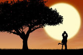 Couple kissing by orange silhouette and tree — Stock Photo