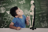 Asian boy with human skeleton — Stock Photo