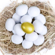 Gold investment eggs nest — Foto de Stock