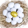 Gold investment eggs nest — Lizenzfreies Foto