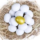 Gouden investering eieren nest — Stockfoto