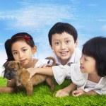 Happy children with puppy — Stock Photo