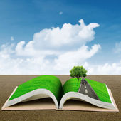 Open book with green tree — Stock Photo