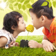 Kissing yellow flower together in park — Stock fotografie #23816983