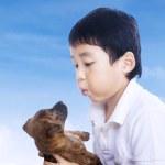 chlapec a jeho pes — Stock fotografie #23939999