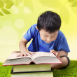 Stock Photo: Boy reading book on grass