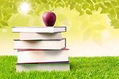 Apple y el libro del conocimiento — Foto de Stock