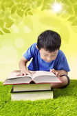 Boy reading book on grass — Stock Photo