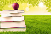Apple and book of knowledge in the park — Stock Photo
