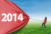 Woman pull new year of 2014 on the meadow — Stock Photo
