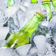 Cold beer bottles on ice 1 — Stock Photo #45797333