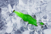 A fresh beer in ice cube — Stock Photo