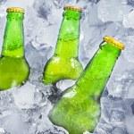 Three bottles of beer on ice — Stock Photo #46518717