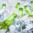 Cold beer bottles on ice — Stock Photo #47293631