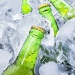 Fresh beer bottles on ice — Stock Photo #47298023