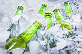 Cold beer bottles on ice — Stock Photo