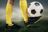 Feet player with a soccer ball 2 — Stock Photo