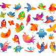 Funny colorful birdies — Stock Vector