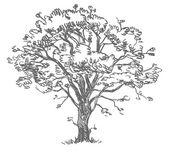 Freehand drawing tree — 图库矢量图片