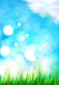 Vector de fondo con un cielo azul, pasto y sol — Vector de stock