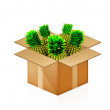 Постер, плакат: Pineapples in cardboard box on white