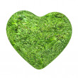 3d grass heart isolated on white background — Zdjęcie stockowe
